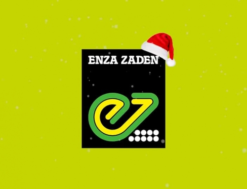 Enza Zaden kerstwens video